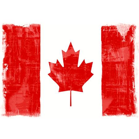 http://schools.yrdsb.ca/markville.ss/history/history/GrungeCanadianFlag-lg.jpg